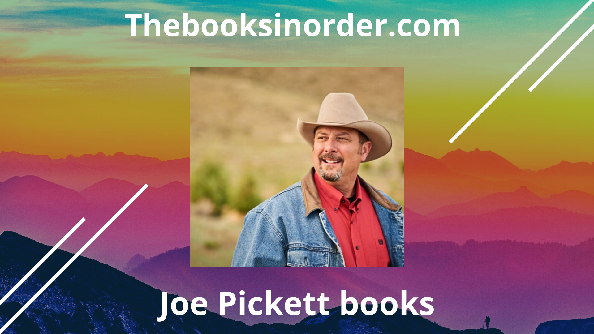 joe pickett series